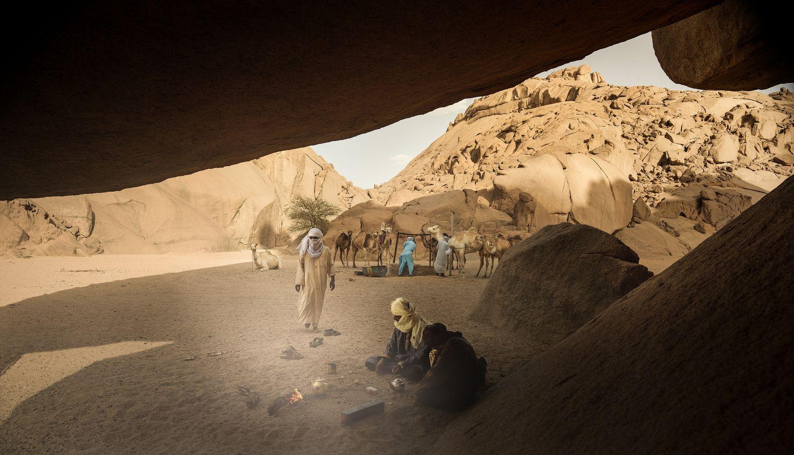 Eau du puits pour les uns et thé brulant pour les autres : les chameaux et ...