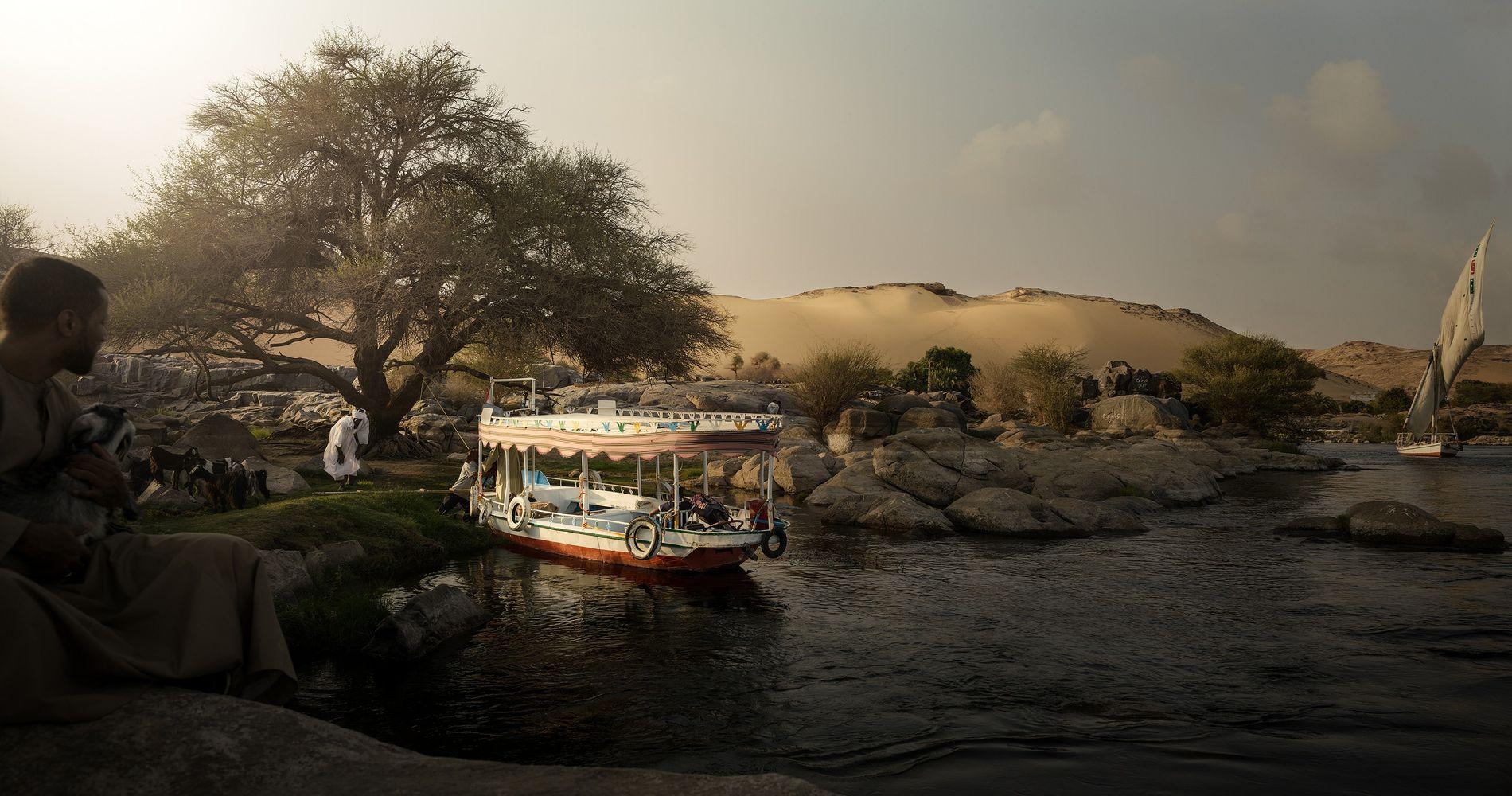 Chèvres en croisière en quête de pâturage, environs d'Assouan, Égypte, 2018 - Régulièrement, Yunis, Bilal et ...