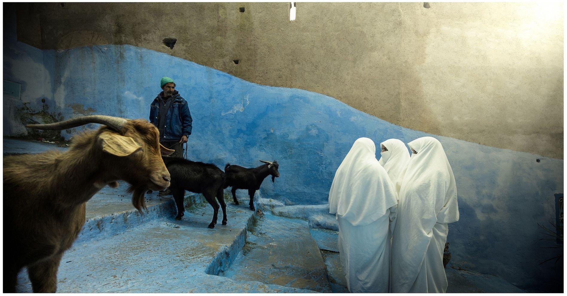 Rencontre d'un autre temps dans les ruelles de Chefchaouen, la cité bleue. Lestrois femmes portent ici l'haïk, vêtement traditionnel maghrébin principalement répandu en Algérie. Cettemythique tenue vestimentaire est aujourd'hui en voie de disparition.
