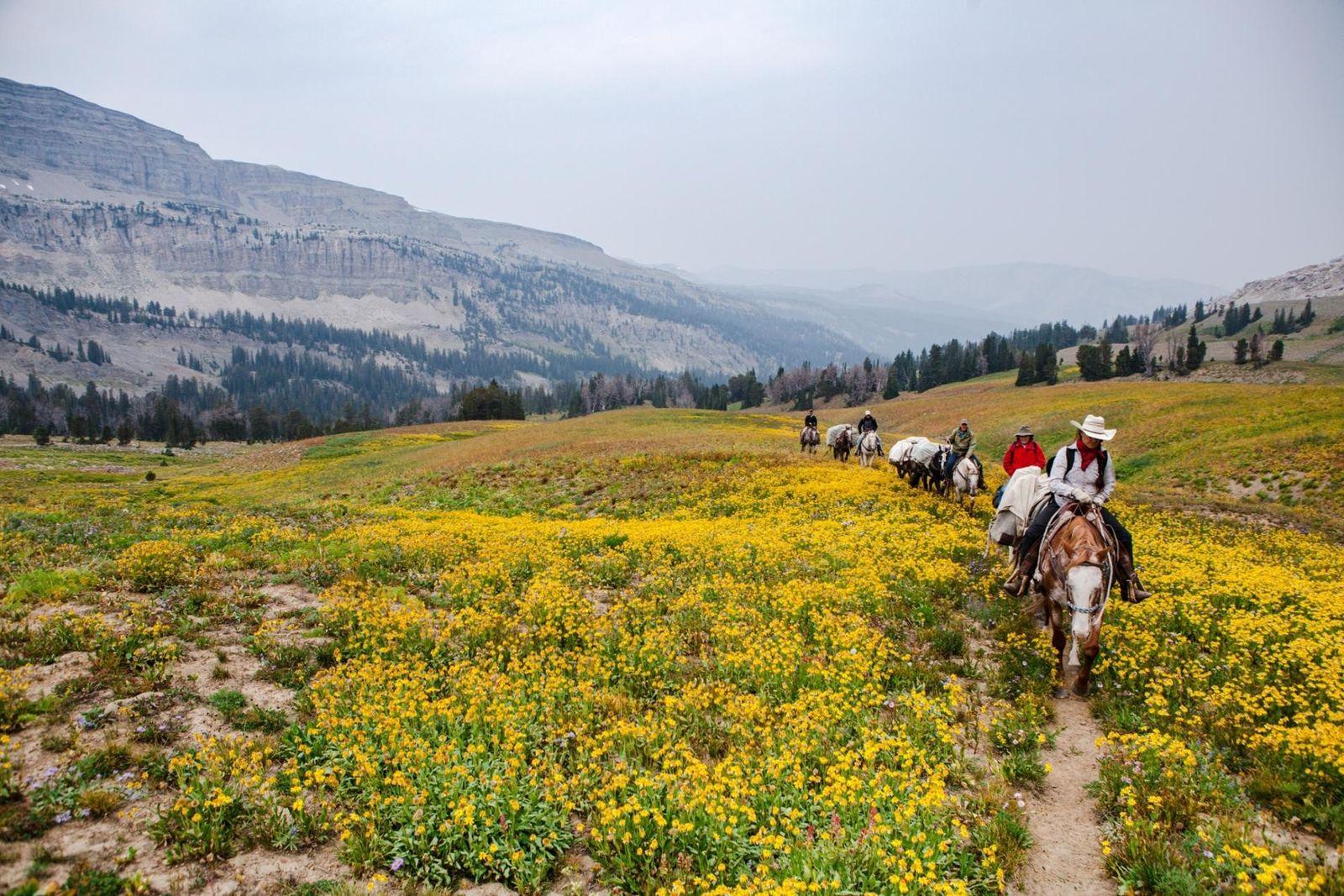 La randonnée équestre pour voyager autrement