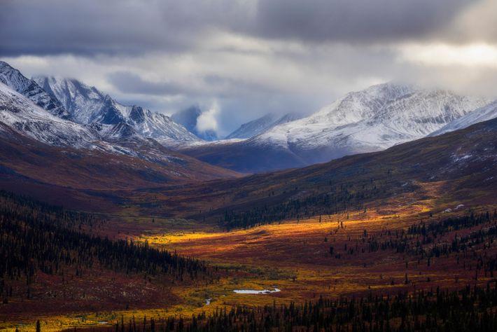 La ruée vers l'or du Klondike tire son nom de la rivière qui traverse le Yukon. ...