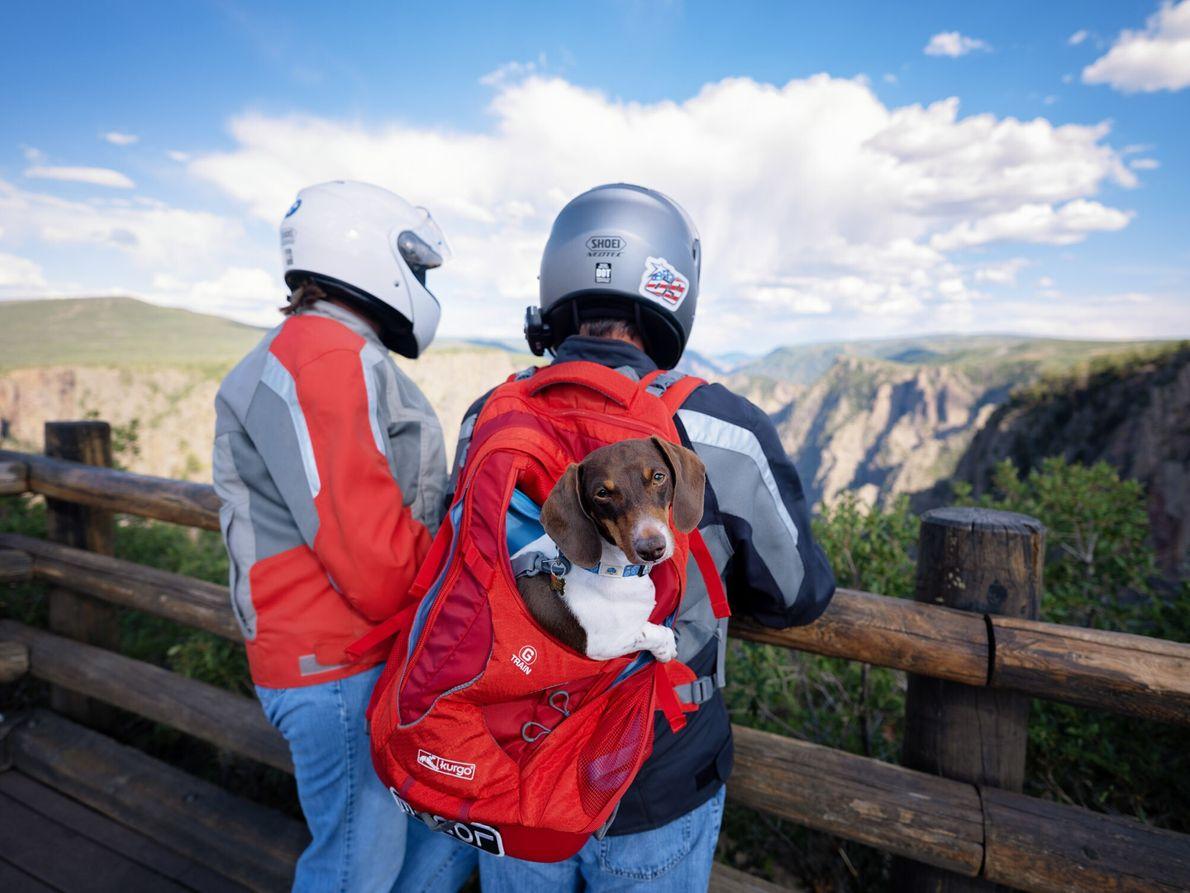 Les belvédères naturels du Black Canyon offrent un détour sensationnel aux voyageurs qui ont quelques heures ...