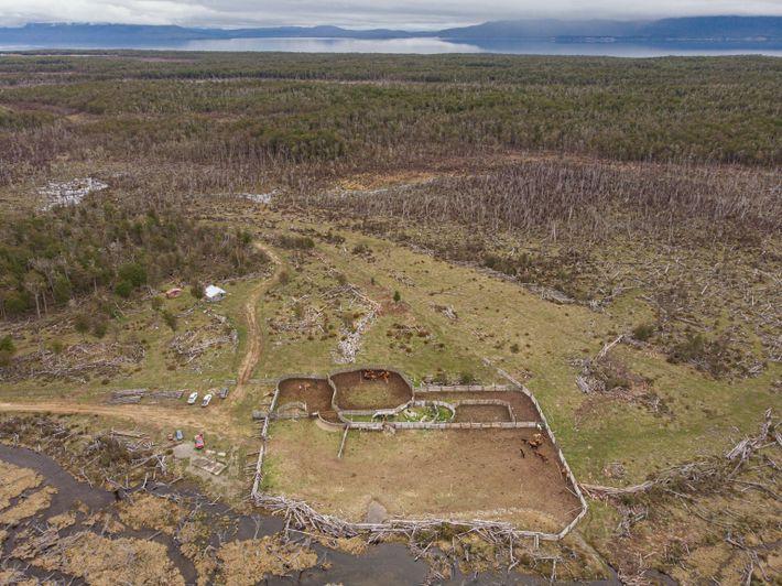 Baqueanos - Location aerial