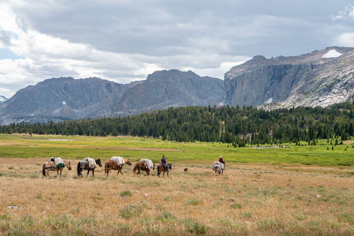 Sarah Woltman de Bear Basin Adventures conduit un groupe de chevaux pour installer un campement dans ...