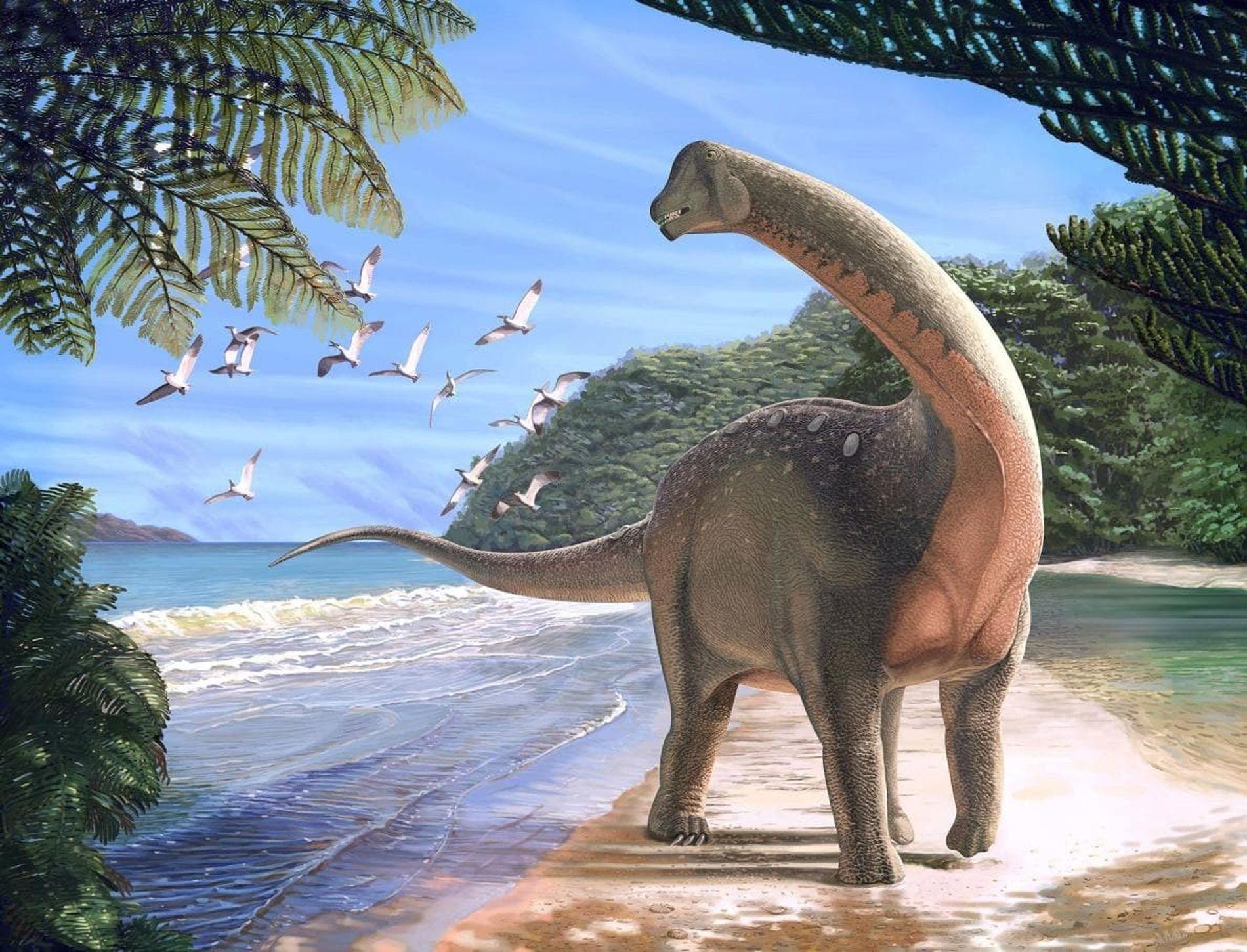 Le nouveau dinosaure, Mansourasaurus shahinae, représenté sur une plage de l'actuel désert égyptien, il y a environ 80 millions d'années.