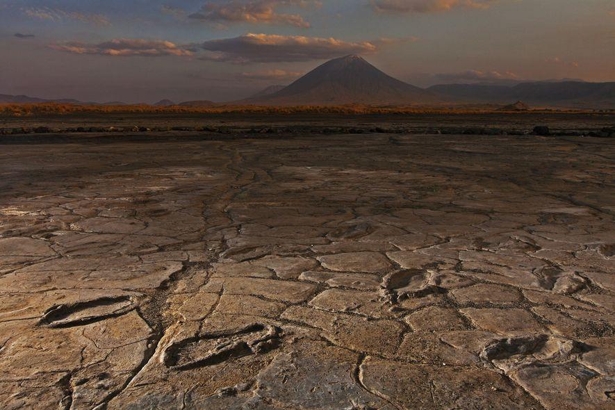 Sur le site d'Engare Sero en Tanzanie, un groupe composé de plus d'une dizaine d'adultes et ...