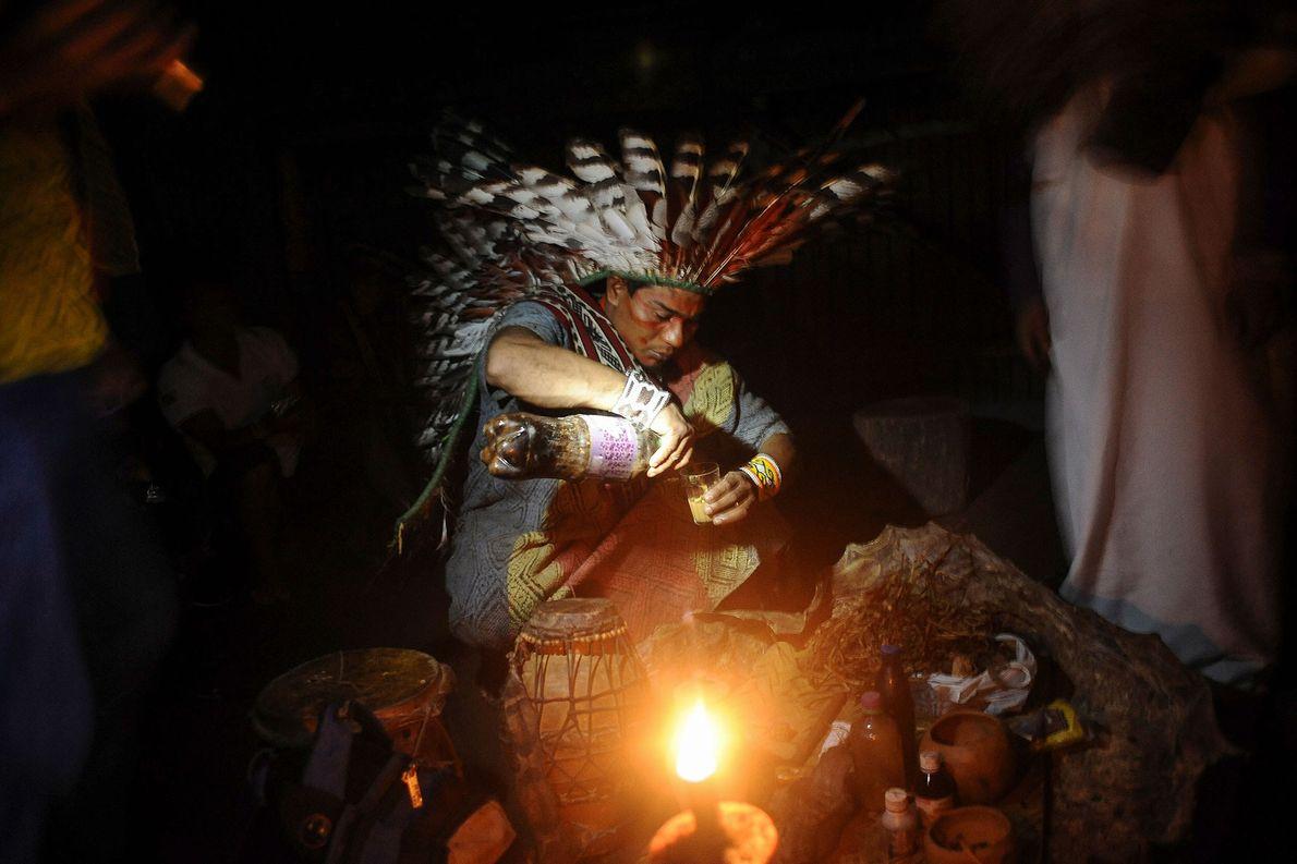 Un membre de la tribu brésilienne Huni Kui prépare l'ayahuasca qui sera utilisée dans un rituel …