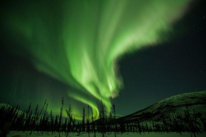 Des rideaux de lumière bordent le ciel de l'Alaska. Connus sous le nom de lueurs boréales ...