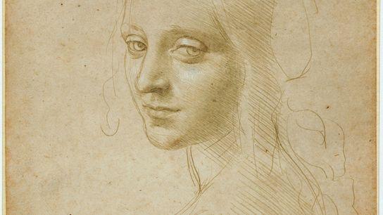 La conservatrice Carmen Bambach décrit les subtilités de la technique de Léonard de Vinci dans la ...