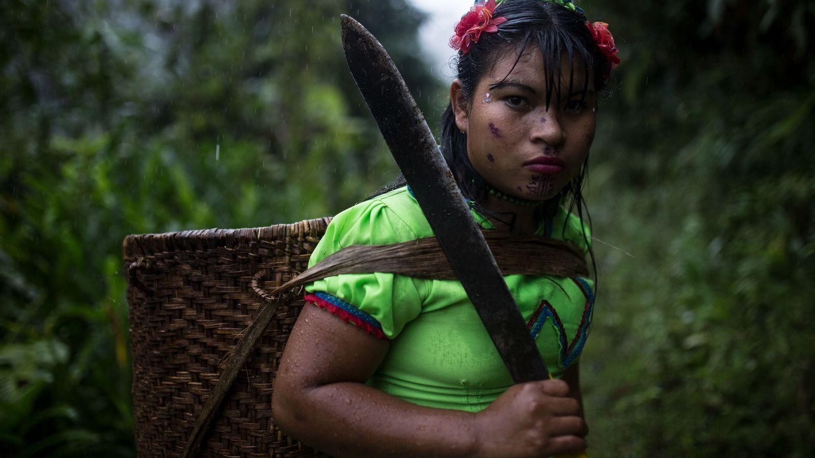 Portant une machette et un panier à provisions, une femme Emberá Katío pose son regard pénétrant ...