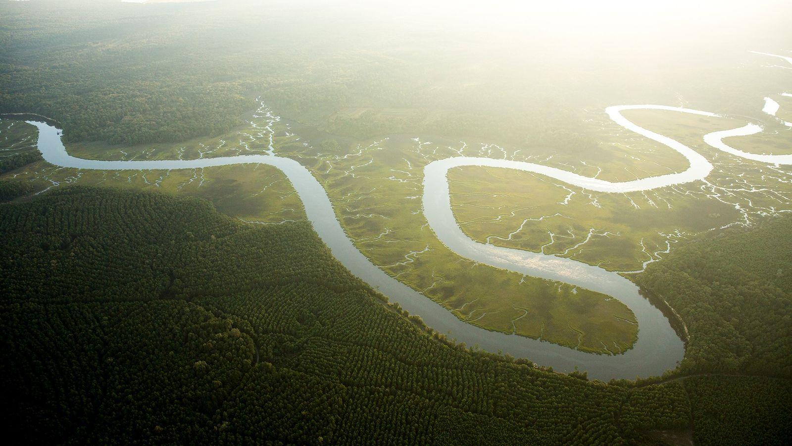Les effets combinés de l'augmentation des niveaux de CO2 et des températures amplifieront la consommation d'eau ...