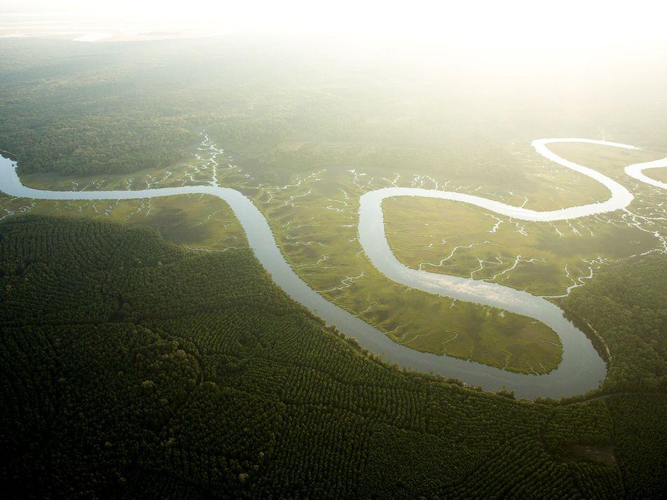 En 2100, les plantes consommeront considérablement plus d'eau qu'aujourd'hui