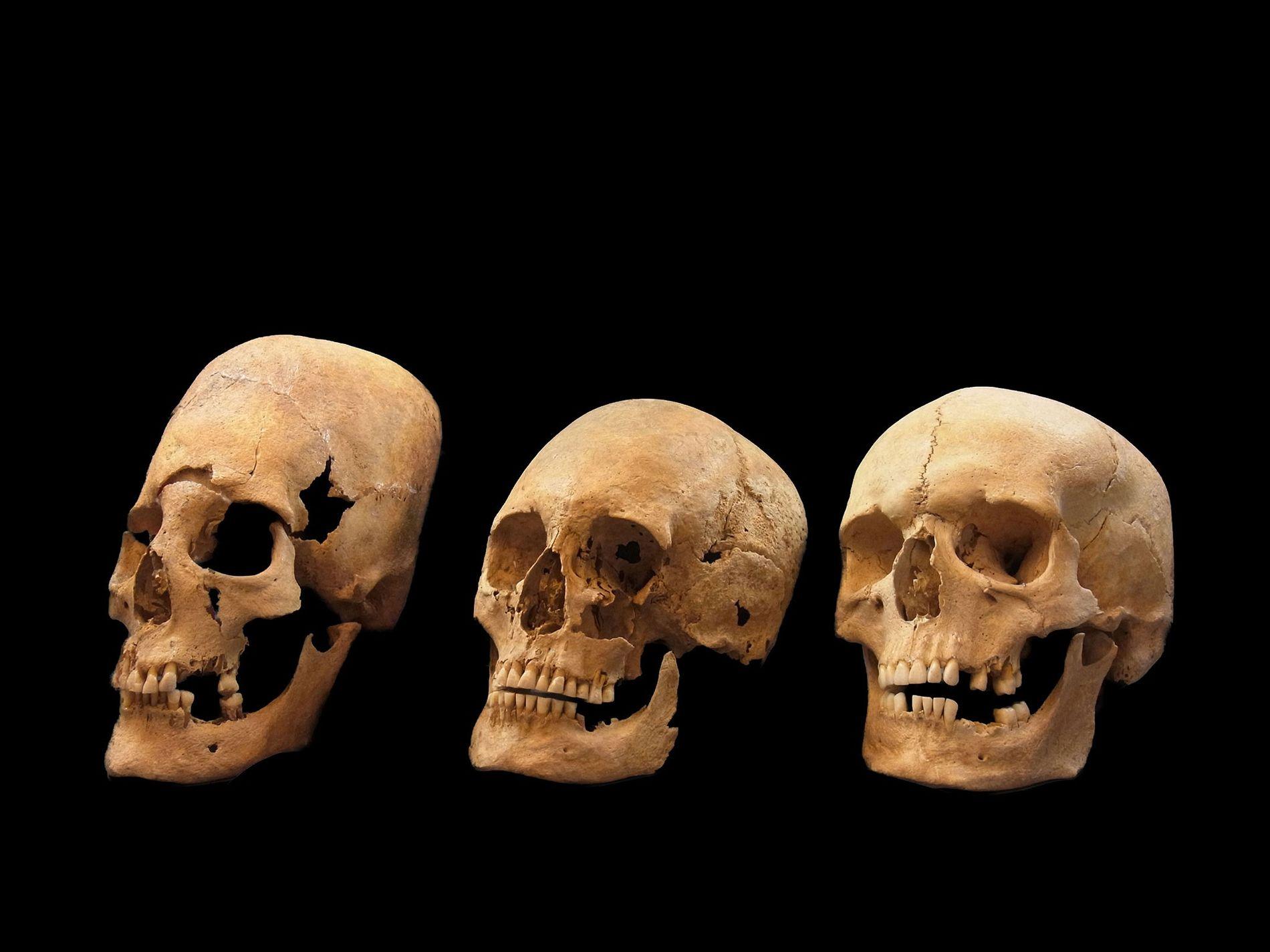 Des crânes mis au jour dans des sépultures vieilles de 1400 ans dans le sud de ...