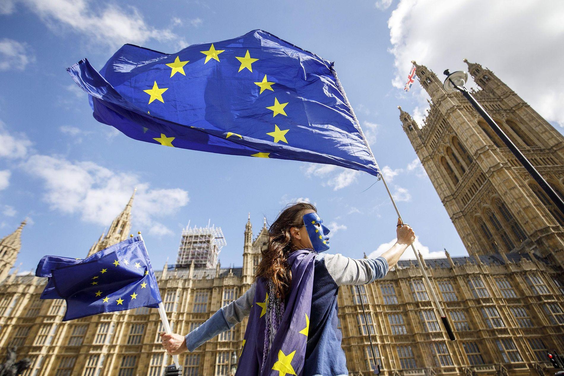 Une supportrice de l'adhésion du Royaume-Uni à l'Union européenne manifeste devant le Palais de Westminster à ...
