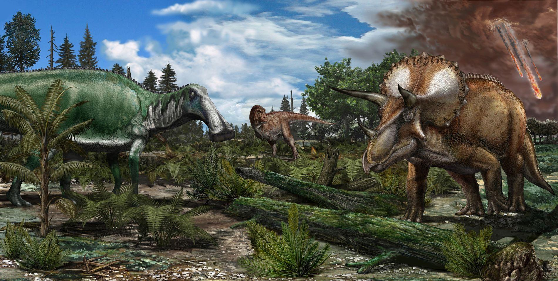 Reconstruction d'une plaine inondable d'Amérique du Nord où, il y a environ 66 millions d'années, rôdaient ...