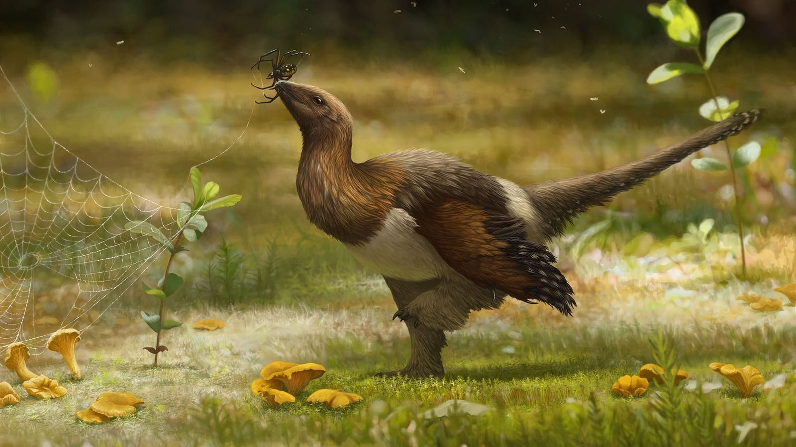 Dans cette reconstitution artistique, la nouvelle espèce de dinosaure Serikornis sungei est à la recherche de ...