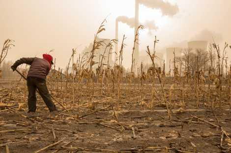 Après une baisse significative, les émissions carbone repartent à la hausse