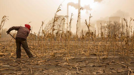 Un fermier attend le printemps près d'une centrale nucléaire dans la province de Shanxi, en Chine. ...