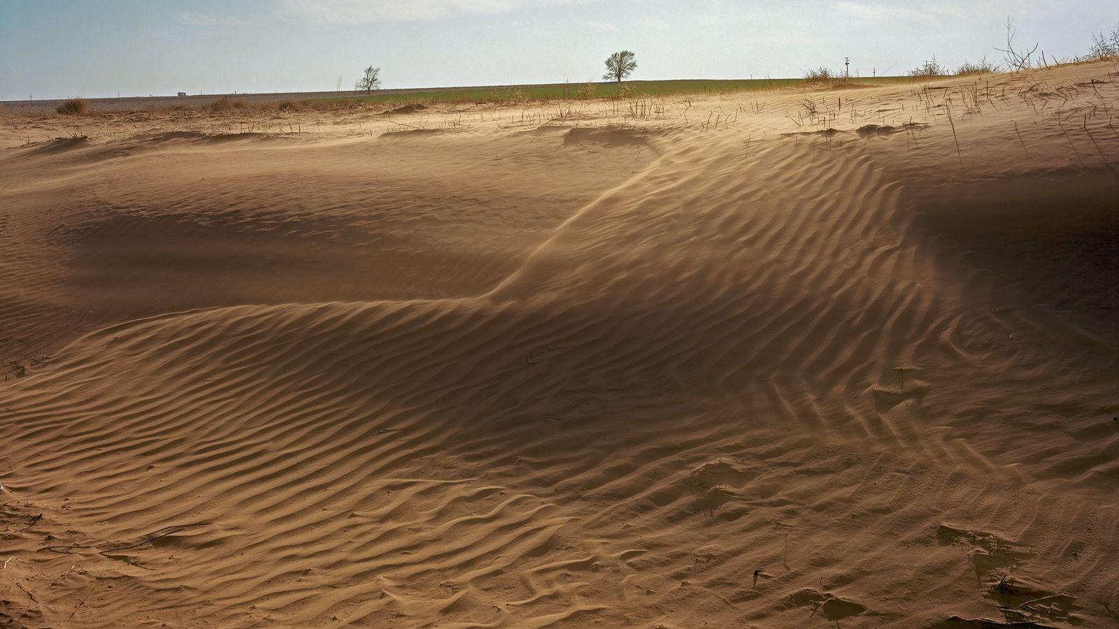 Le vent, par un phénomène d'érosion, entraîne la dégradation de la couche arable sur des terres ...