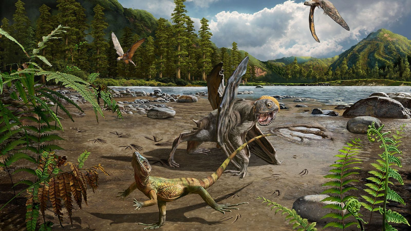 Il y a près de 110 millions d'années, les régions du sud de la Corée du ...