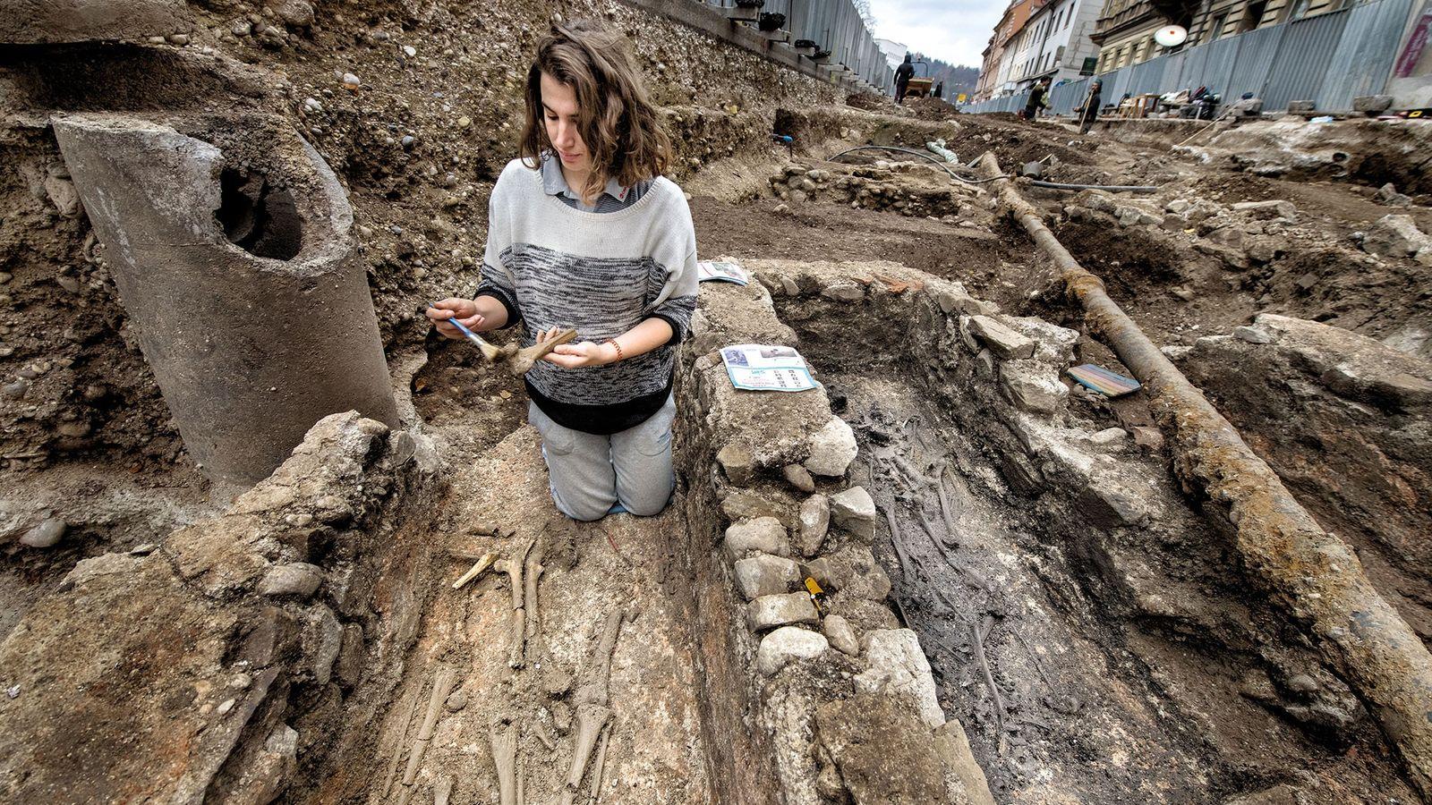 Des fouilles effectuées sous la rue Gosposvetska au centre-ville de Ljubljana ont révélé des vestiges de ...