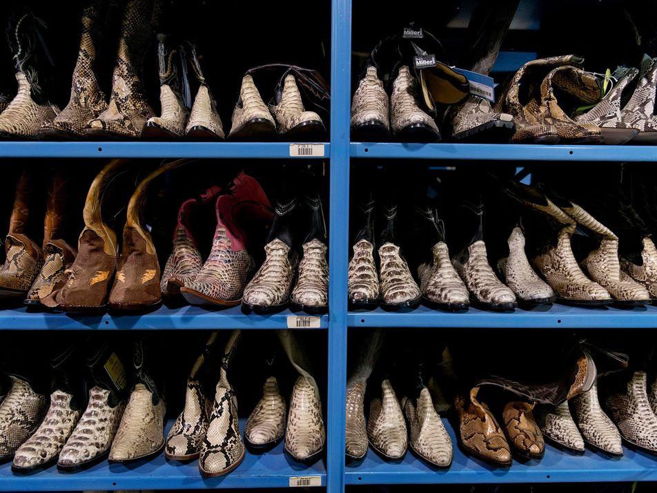Luxe : des milliers d'articles en cuir exotique auraient été saisis