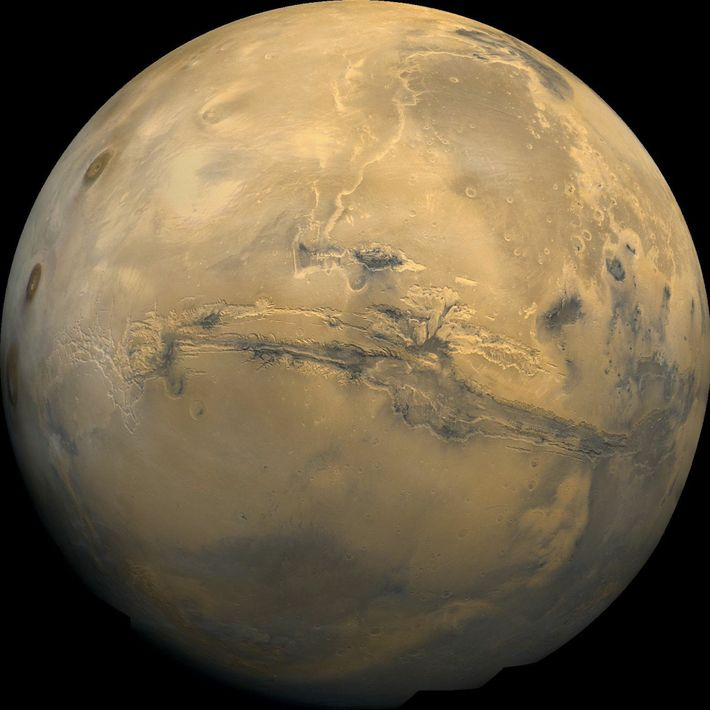 Mars Vision