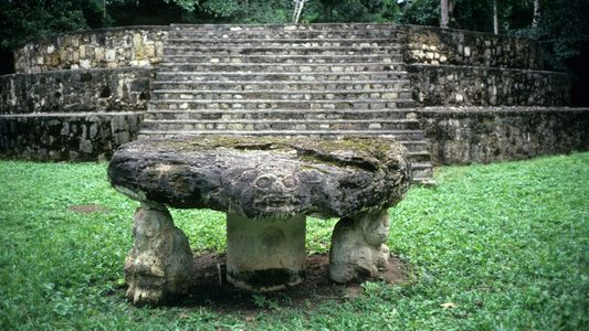 Chez les Mayas, les animaux étaient élevés pour être sacrifiés