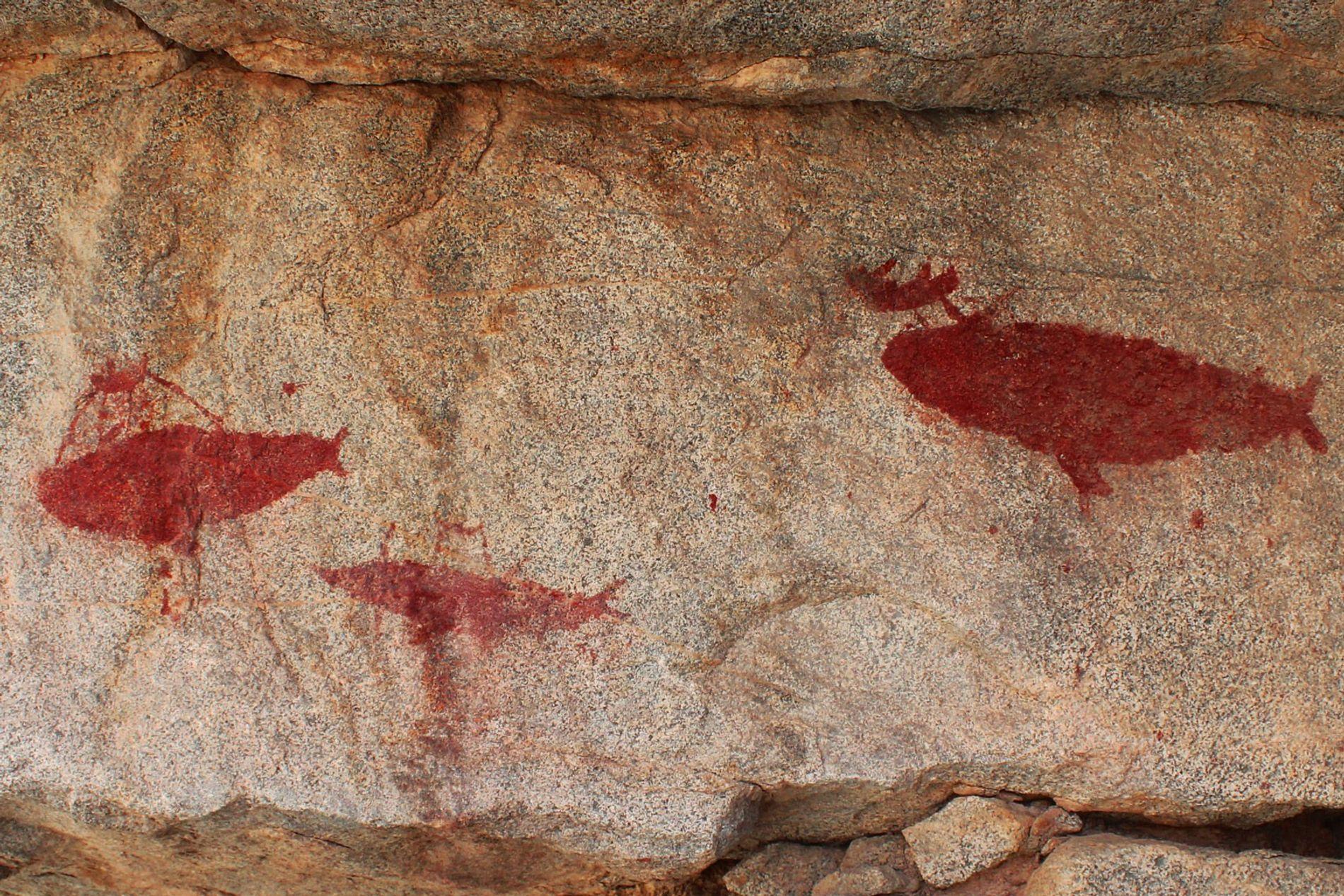Cette image prise dans la ravine d'Izcuña représente une chasse à la baleine.