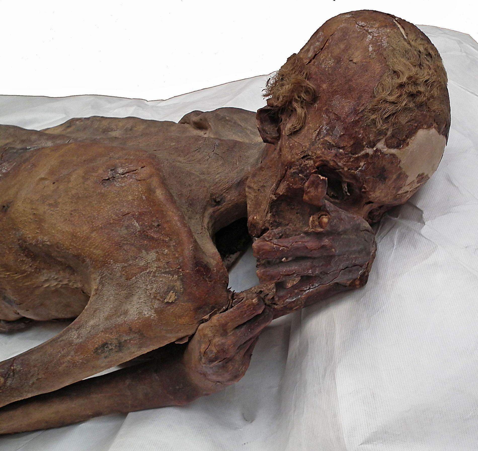 À la lumière naturelle, les détails sont moins proéminents. Lorsque la momie a été mise au jour en 1900, le tatouage a été pris pour une simple marque.