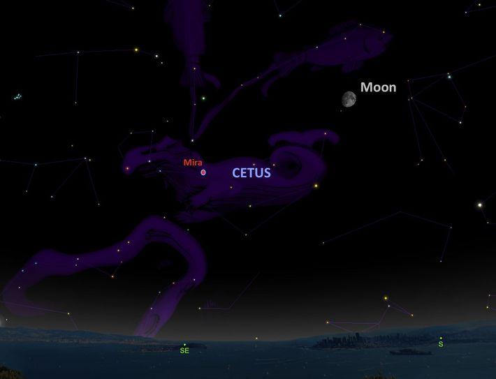 L'étoile Mira, située dans la constellation de la Baleine.
