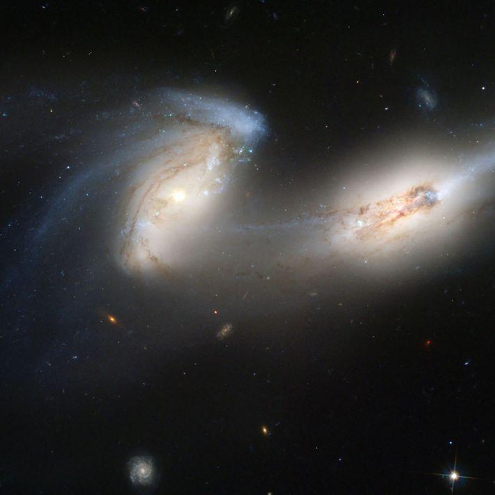 Ces deux galaxies spirale, surnommées les Souris en raison de leur longue queue, sont ici photographiées ...