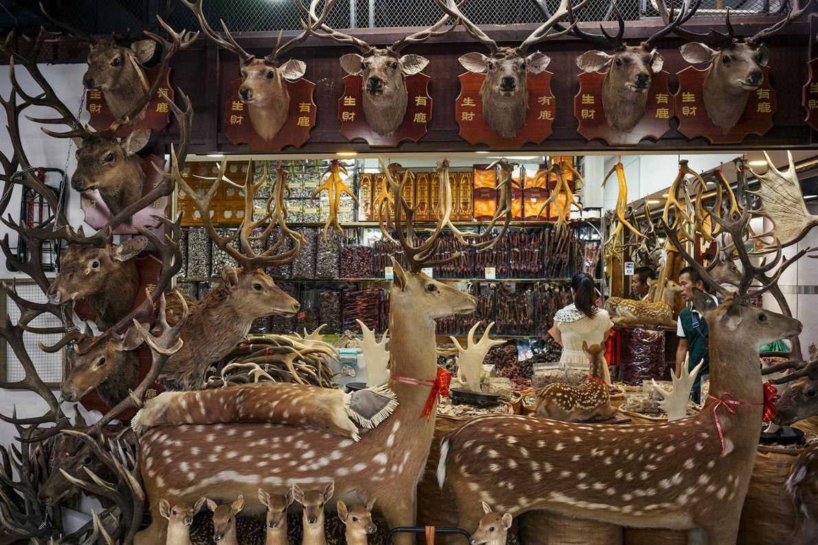 Ce magasin situé dans un marché de Guangzhou, en Chine, est spécialisé dans les pièces de ...
