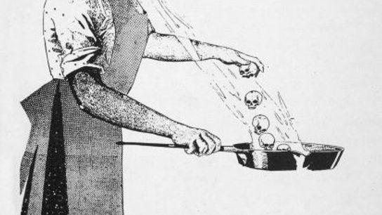 Une cuisinière irlandaise du nom de Mary Mallon a été identifiée comme la première porteuse saine ...
