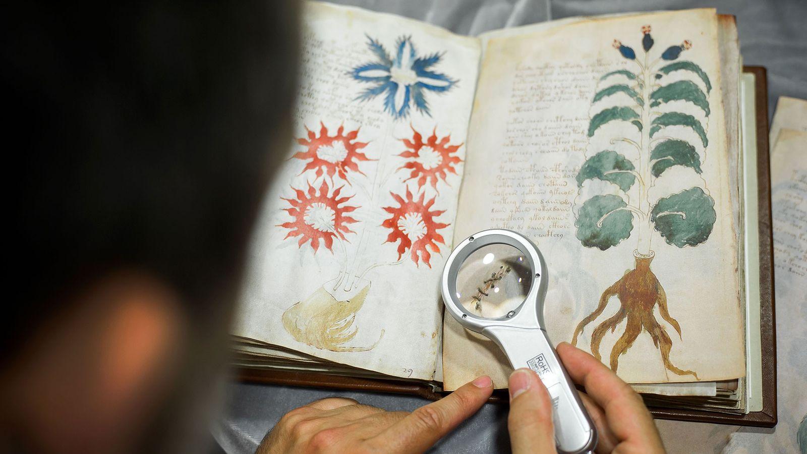 Le manuscrit de Voynich, petit ouvrage modeste conservé dans un coffre-fort de l'université de Yale, constitue ...