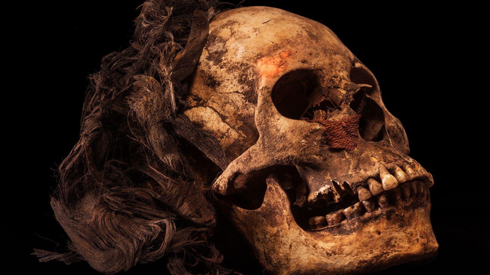 Le crâne de la reine photographié après son excavation. Des cheveux noirs ont été préservés par ...