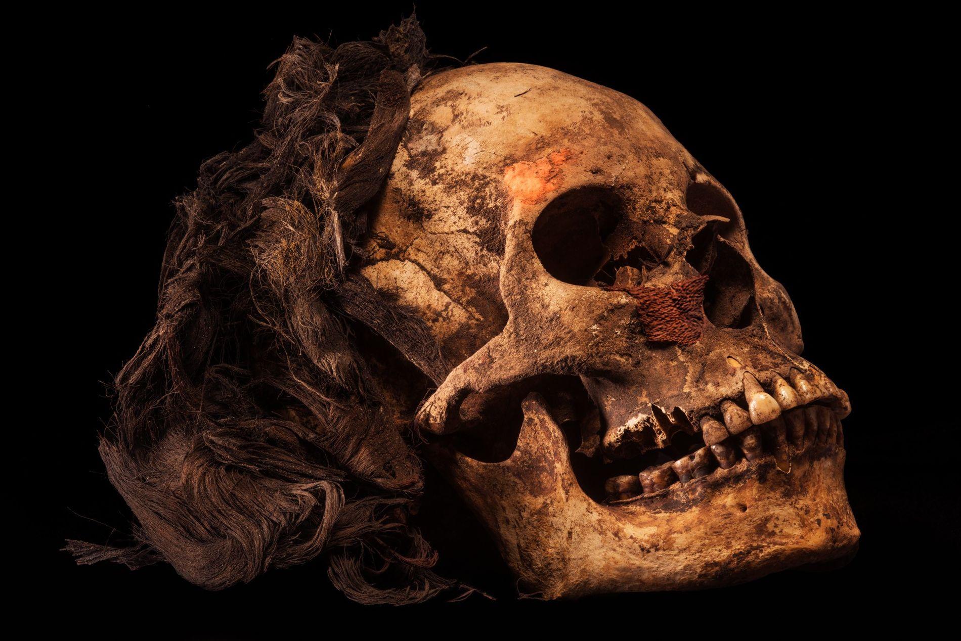 Le crâne de la reine photographié après son excavation. Des cheveux noirs ont été préservés par le climat aride de la région.