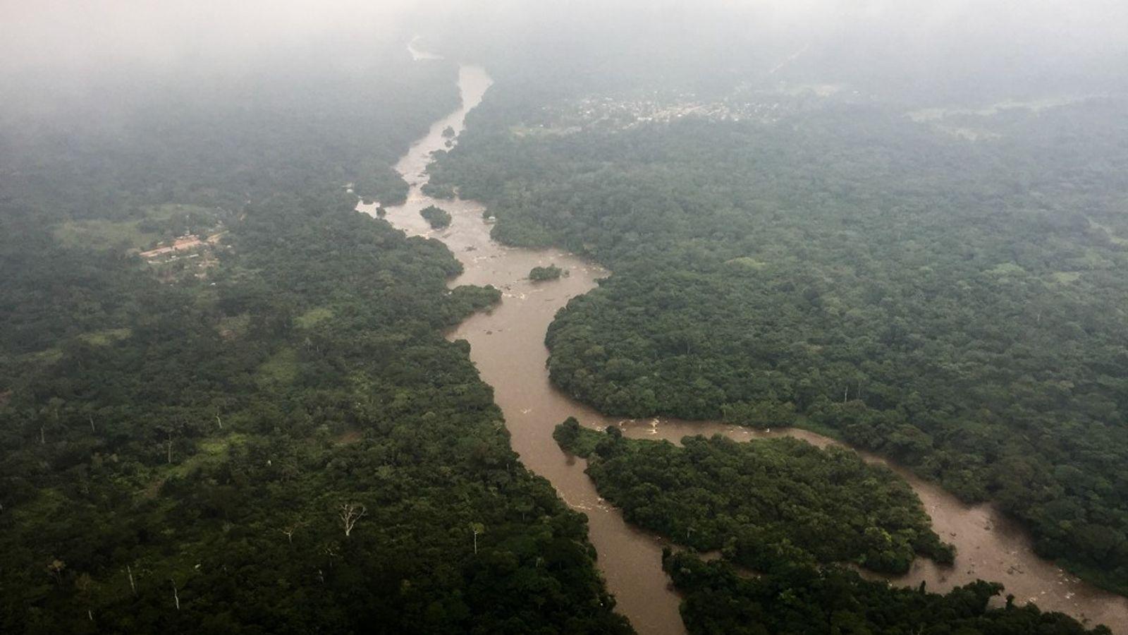Site inscrit au patrimoine mondial de l'UNESCO, la Réserve faunique d'okapis est traversée par la rivière ...