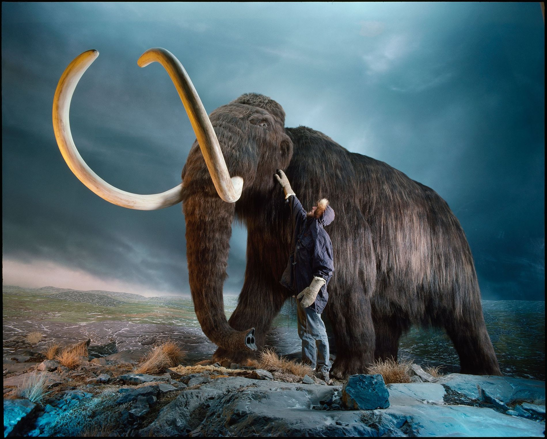 01_booktalk_mammoth