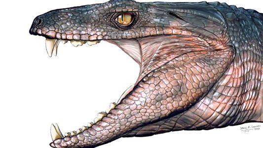 Découverte : Ces crocodiles herbivores coexistaient avec les dinosaures