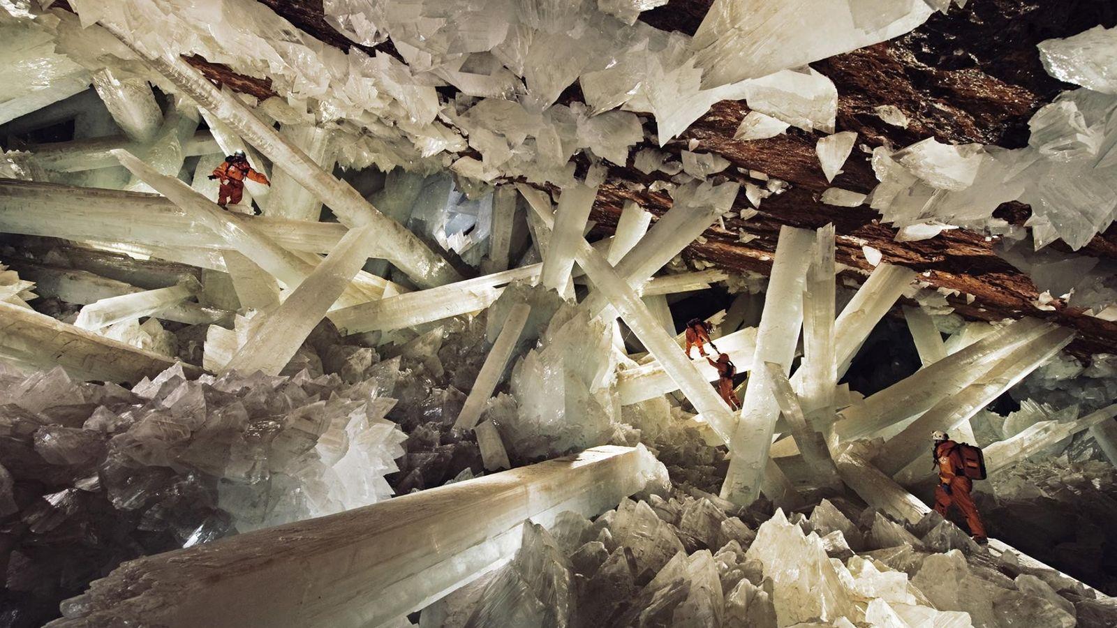 Au Mexique, à l'intérieur de la grotte des Cristaux de Naica, d'importants faisceaux de sélénite sont ...