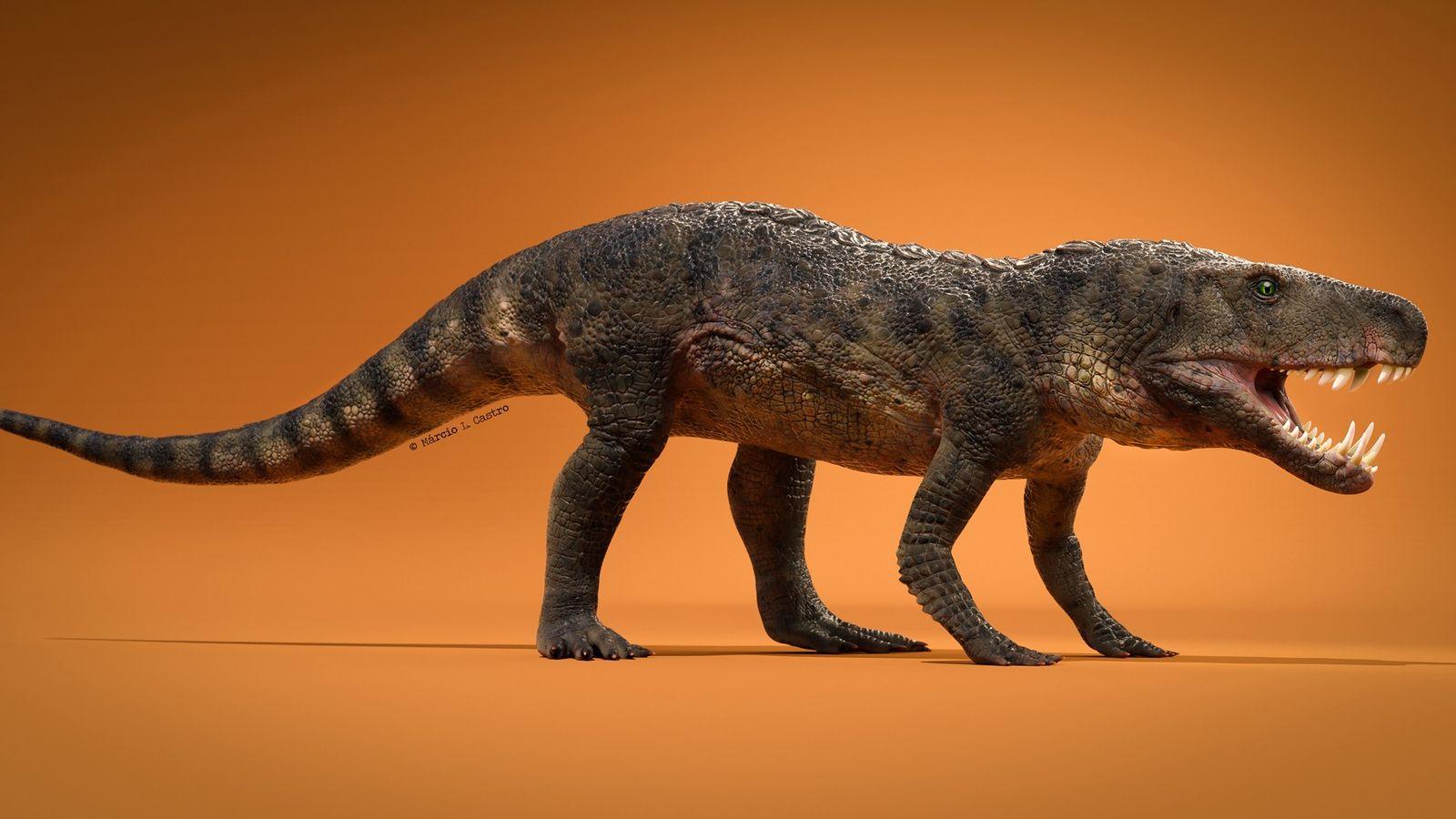 Cette espèce de reptile préhistorique récemment découverte et baptisée Dynamosuchus collisensi aurait vécu il y a ...