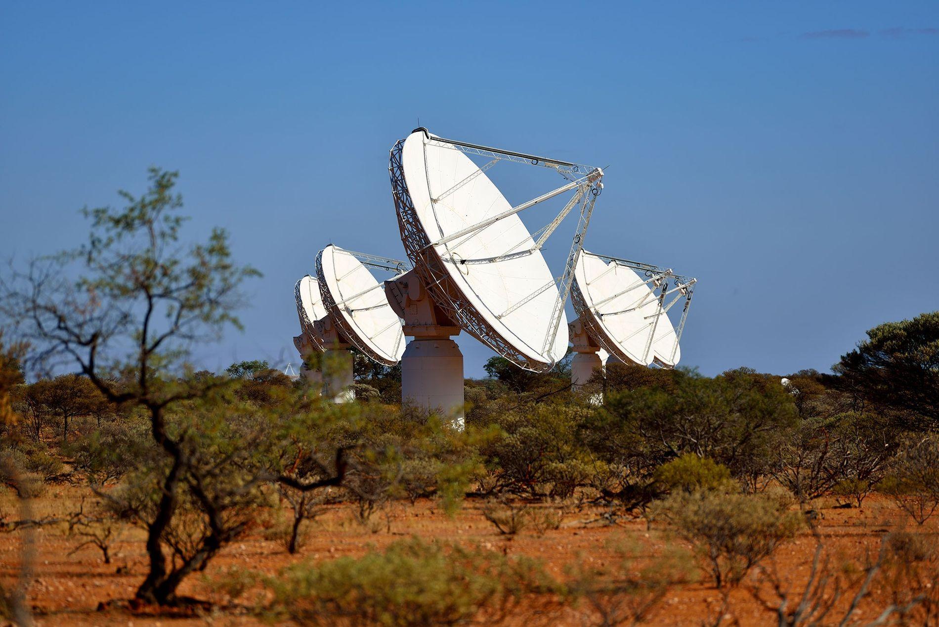Les multiples antennes paraboliques de l'Australian Square Kilometer Array Pathfinder, dont certaines sont visibles ici, ont ...