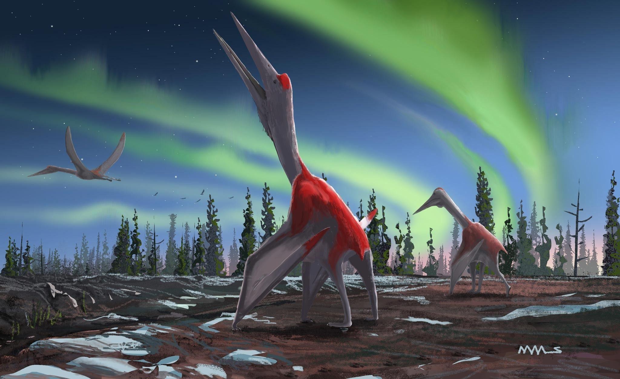 Paléontologie : découverte d'un dragon piégé dans la glace | National Geographic