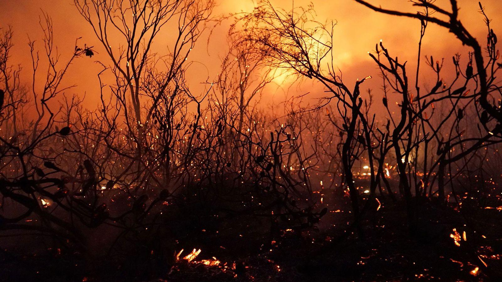 Un incendie s'est déclaré dans le parc national Deepwater dans le Queensland le 28 novembre 2018. ...
