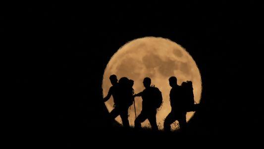 Les plus belles photos de l'éclipse lunaire du 27 juillet