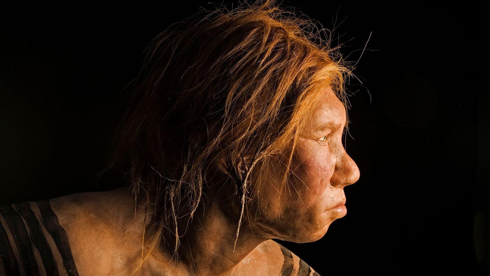 Dévoilée en 2008, cette reconstitution d'une femme de Néandertal fut la première réalisée à l'aide d'ADN.