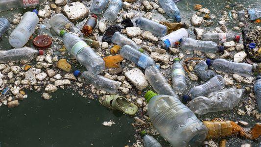 Dans l'Atlantique Nord, le volume de plastique a triplé depuis 1960