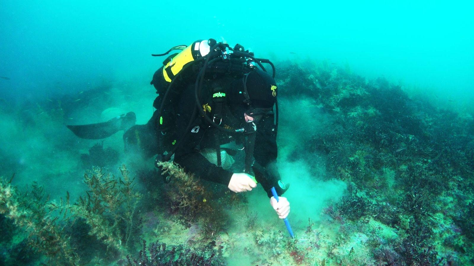 Un plongeur de la gendarmerie italienne, les Carabinieri, prélèvent des roches à proximité de l'un des ...