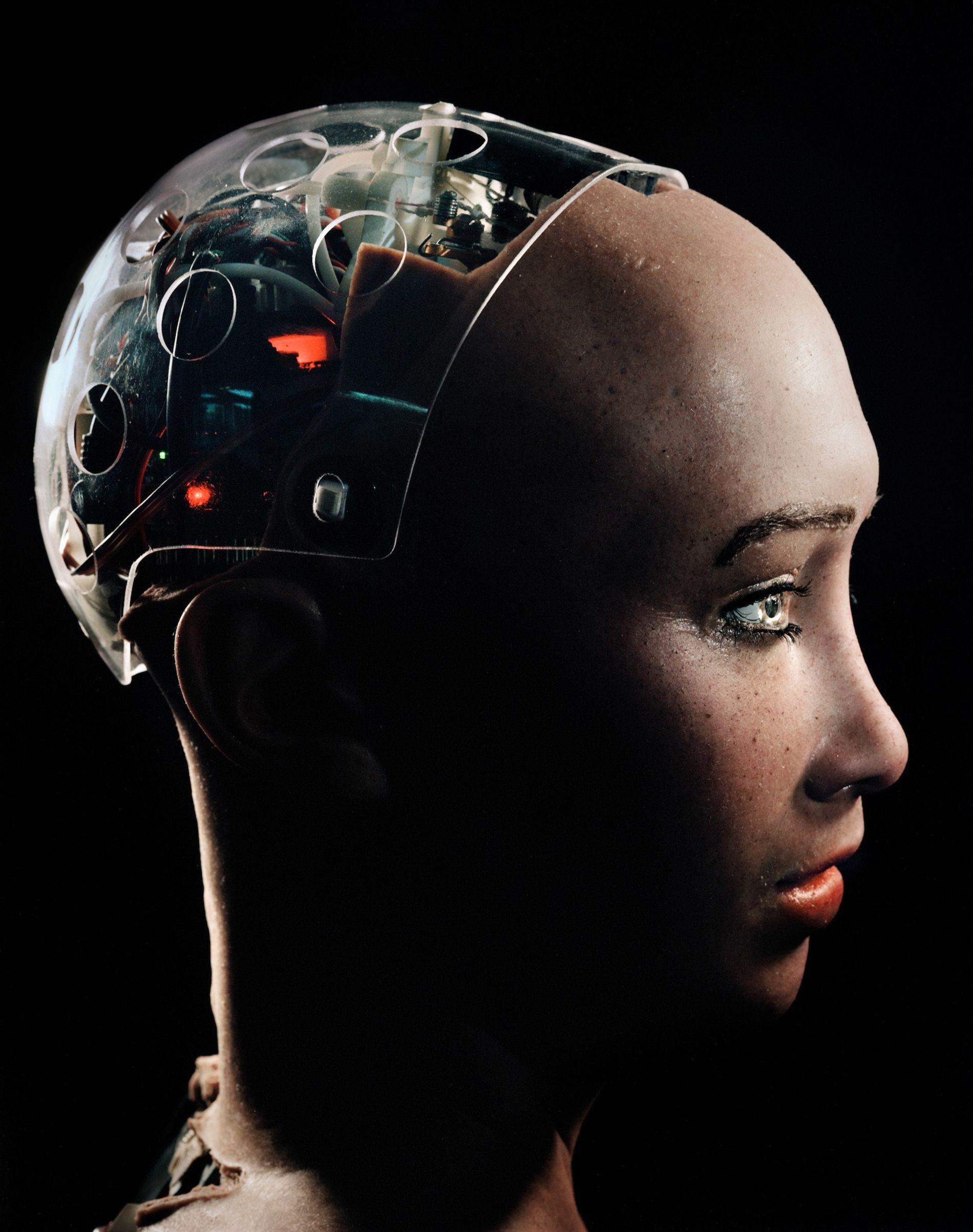 Un crâne transparent permet de voir à l'intérieur de la tête de Sophia, l'un des robots ...